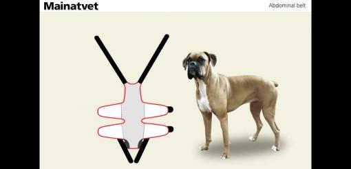 KRUUSE   Abdominal Dog Bandaging